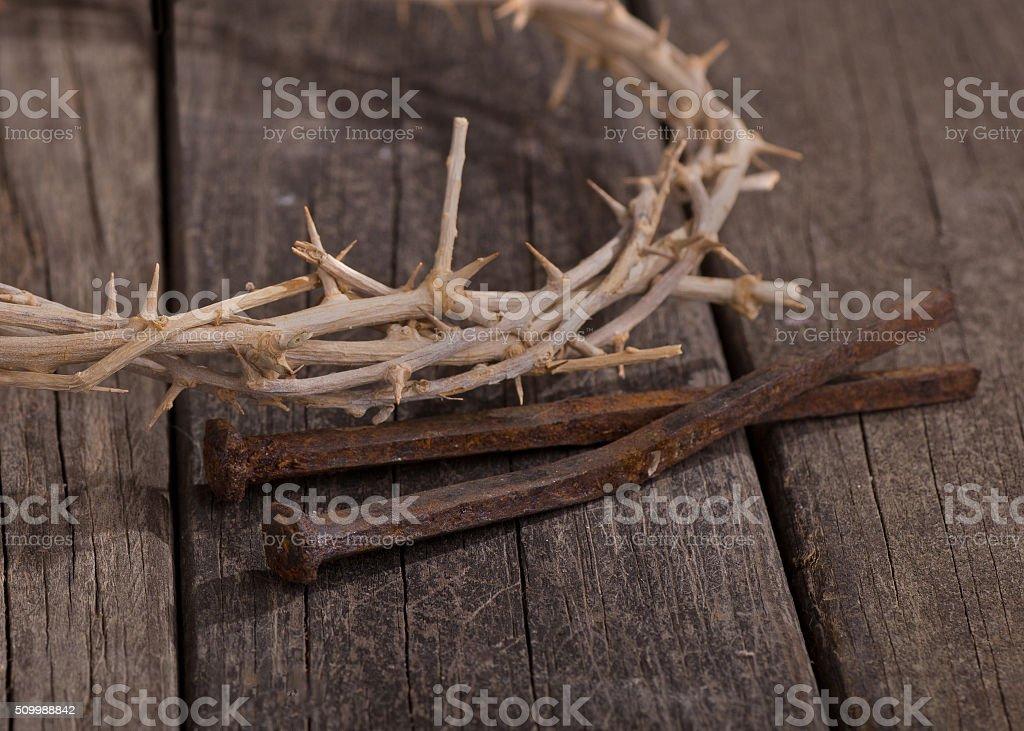 Crown of Thorns Closeup stock photo