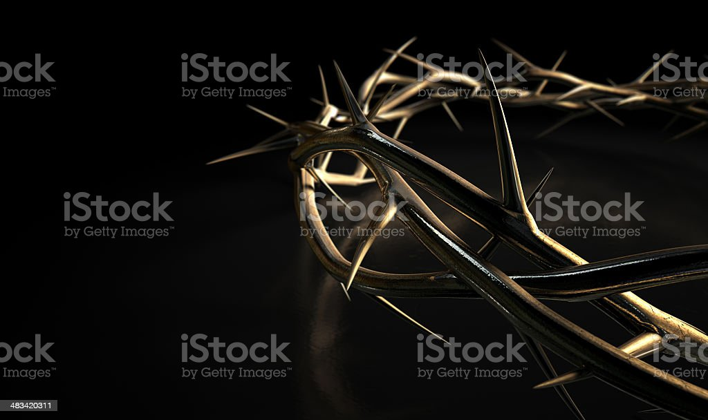 Crown Of Thorns Gold On Black stock photo