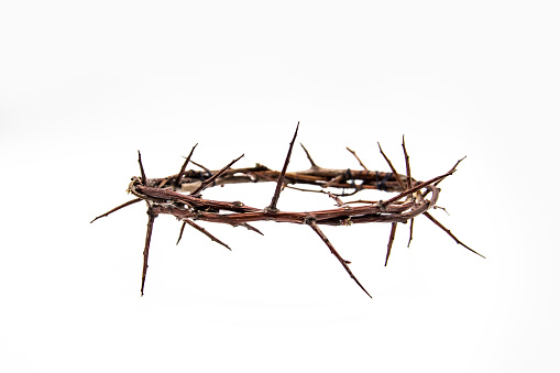 A crown of thorns on a white background. Conceptual phototo use in the design. A wreath of branches with thorns