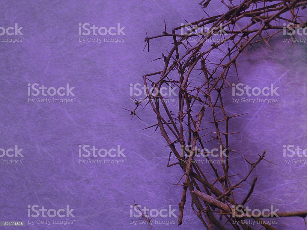 crown of thorns on purple background stock photo