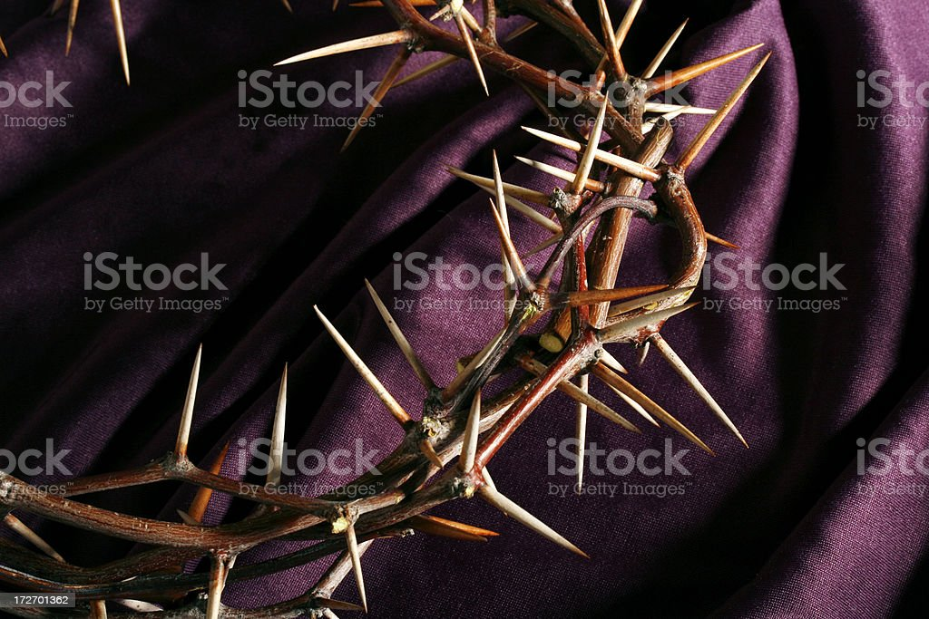 Crown of Thorns on Purple royalty-free stock photo
