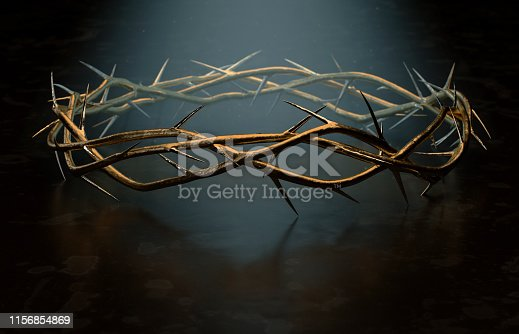 istock Crown Of Thorns 1156854869