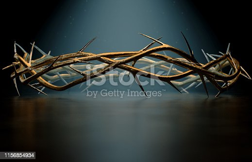 istock Crown Of Thorns 1156854934
