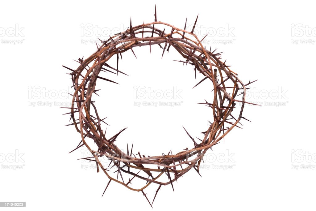 Crown of Thorns stock photo