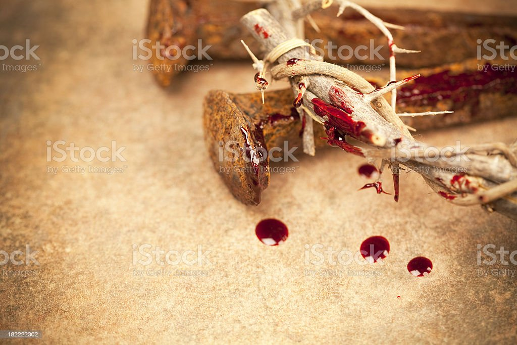 Crown of Thorns Series stock photo