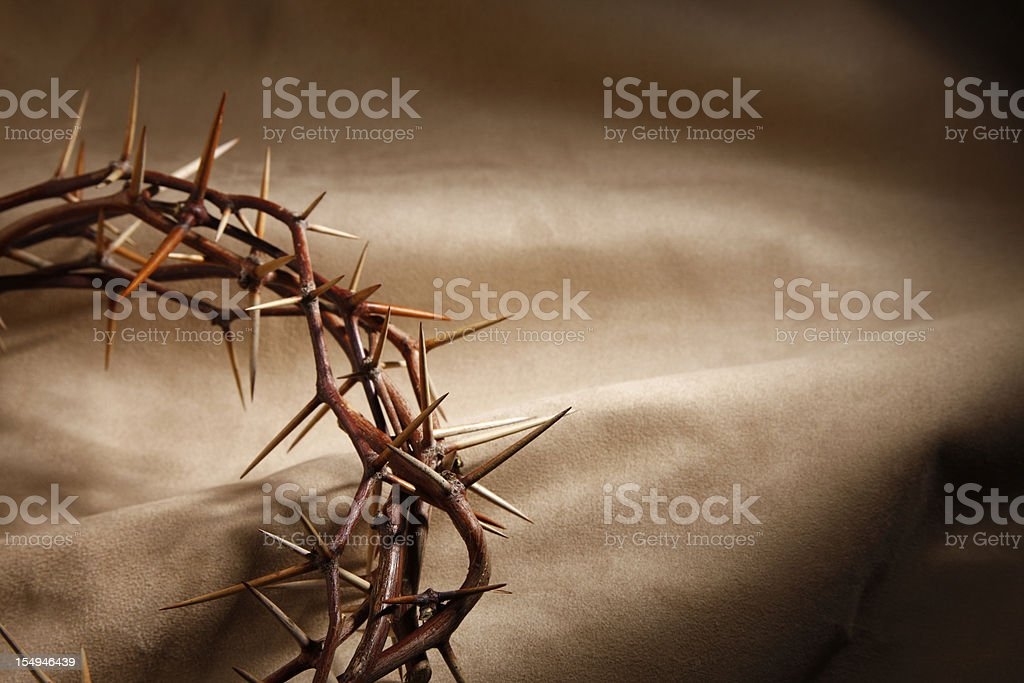 Crown of Thorns with Copyspace royalty-free stock photo