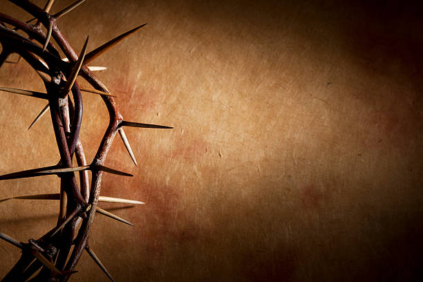 crown of thorns with copyspace - sharp stock photos and pictures