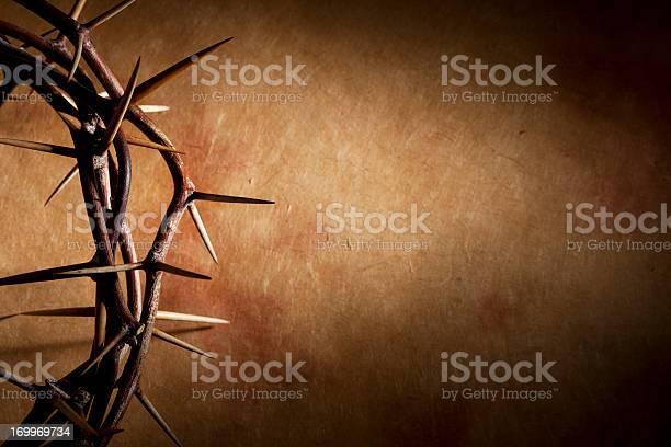Crown Of Thorns With Copyspace Stockfoto en meer beelden van Doorn