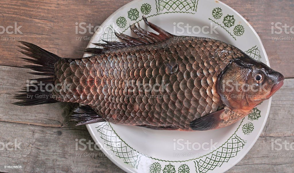 crucian on a ceramic plate stock photo