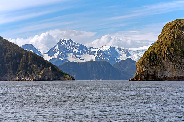 cruise near seward, alaska - wildplassen stockfoto's en -beelden