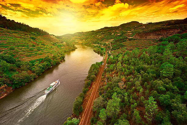 Cruise Vineyards in the Valley of the River Douro, Portugal duero stock pictures, royalty-free photos & images