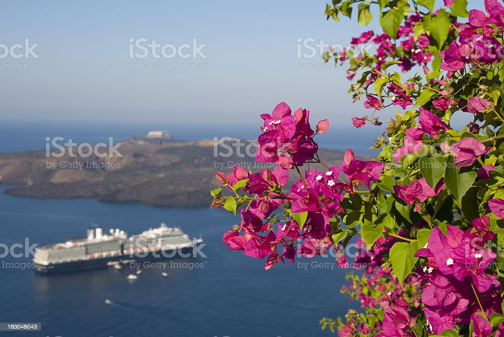 Cruise Ship and Blooming Bougainvillea royalty-free stock photo