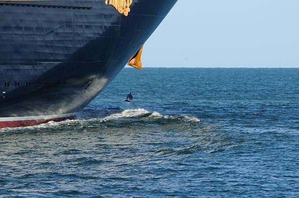 Cruise ship disney fantasy bow with dolphin picture id458932919?b=1&k=6&m=458932919&s=612x612&w=0&h=ocvtegvytqjz9uk6qbtuwbw q3cz5 wqok7n6vhvurs=