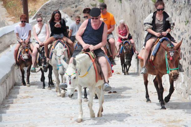 kreuzfahrt touristen invasionsant insel santorin reiten traditionelle esel mit bunten sattel - fira stock-fotos und bilder