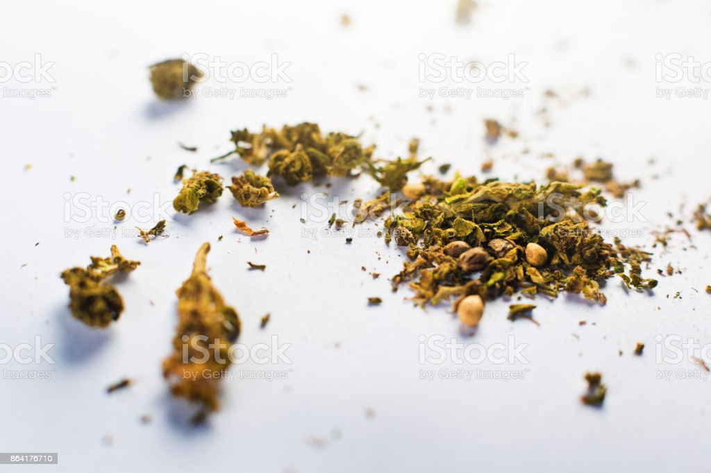 Crumbs of dry, unprocessed cannabis with a bud royalty-free stock photo