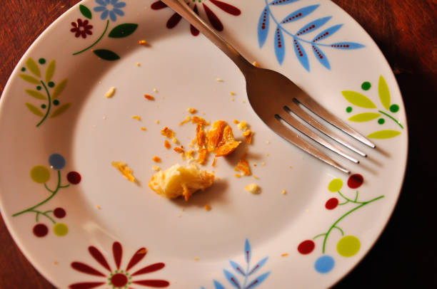 Crumbs on a plate with a fork stock photo