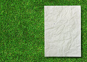 istock crumpled recycle paper on green grass background 477417650