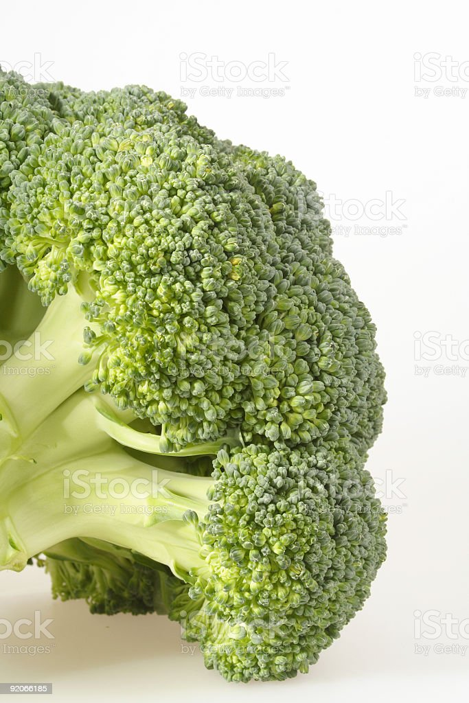 crunchy healthy brocoli stock photo