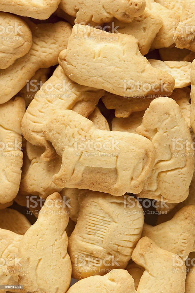Crunchy Lemon Animal Cracker Cookies royalty-free stock photo