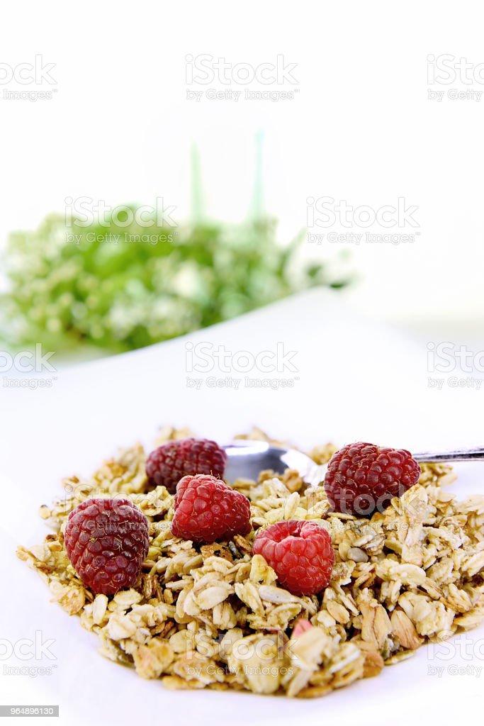 Crunchy Oat Granola Breakfast royalty-free stock photo