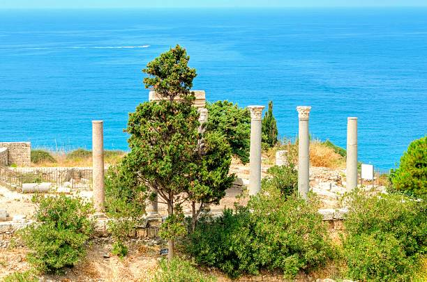 kreuzfahrer castle, byblos, libanon - römisch 6 stock-fotos und bilder