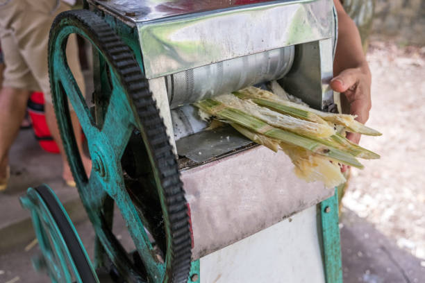 Crush machine working with crushed sugar cane in store Crush machine working with crushed sugar cane in homegrown store sugar cane stock pictures, royalty-free photos & images