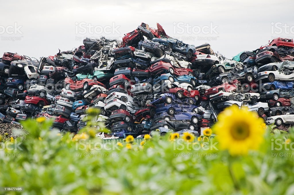 Crushed Cars in the Nature stock photo
