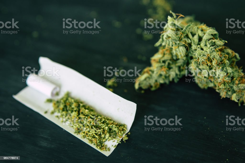 crushed weed on a black table close up. weed Joint weed Macro of cannabis buds marijuana with trichomes and royalty-free stock photo