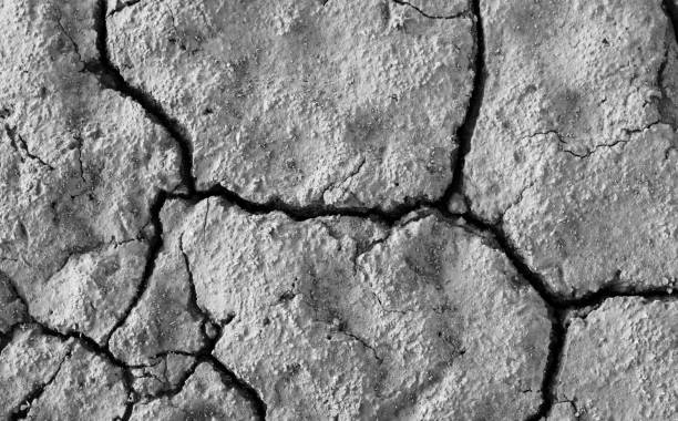 Crusted Earth stock photo