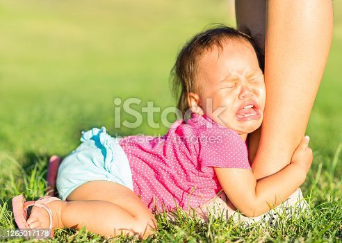 Discipline and parenting. Adorable asian baby girl in tears crying and pleading for attention attached to parents ankle while lying on the grass at the park on a summer day.