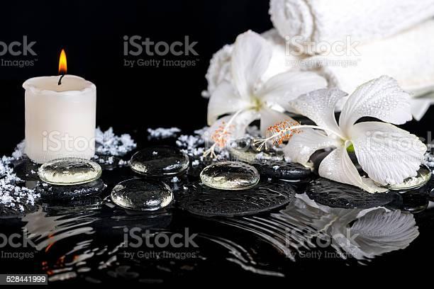 Photo of cryogenic spa still life of delicate white hibiscus, zen stones