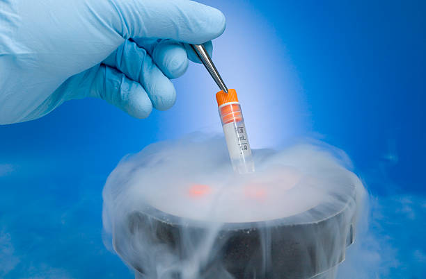 Cryopreservation Cryopreservation of samples. stem cell stock pictures, royalty-free photos & images