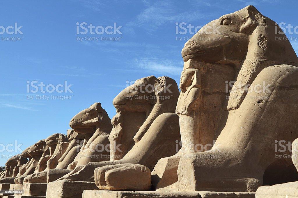 Cryosphinxes, Karnak Temple, Luxor, Egypt stock photo
