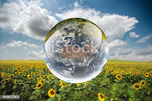 istock Crystal ball reflecting globe of the earth in sunflower field 949622904