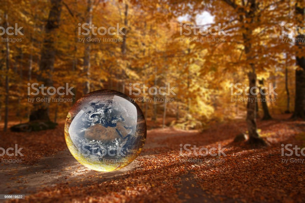 Crystal Ball Reflecting Globe Of The Earth Stock Photo