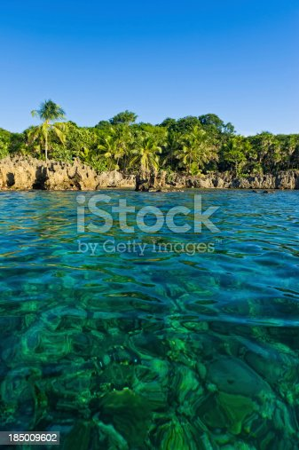 istock Crystal Clear Caribbean Water and Coral Reef 185009602