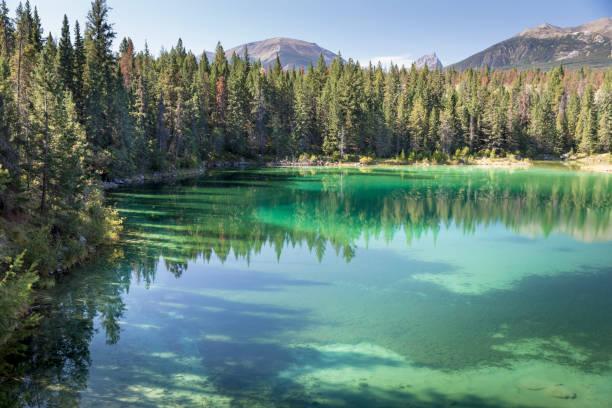 lac de montagne limpide dans le parc national de jasper - lac mirror lake photos et images de collection