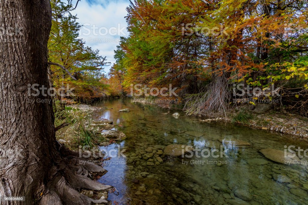 Crystal Clear Texas Hill Country Stream. - Royalty-free Autumn Stock Photo