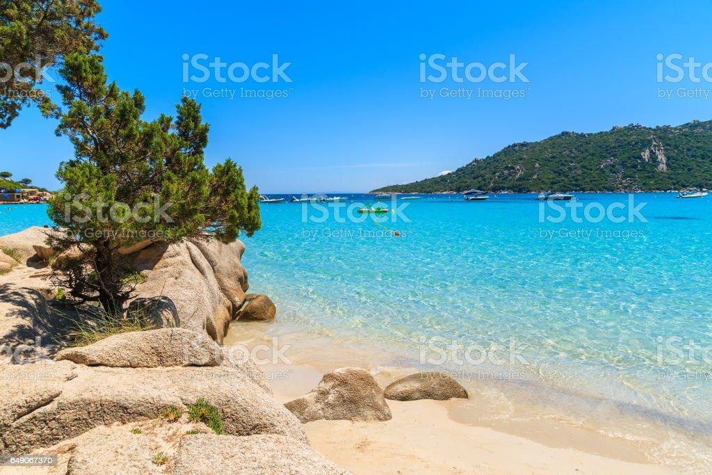 Crystal clear turquoise sea water of Santa Giulia beach, Corsica island, France stock photo