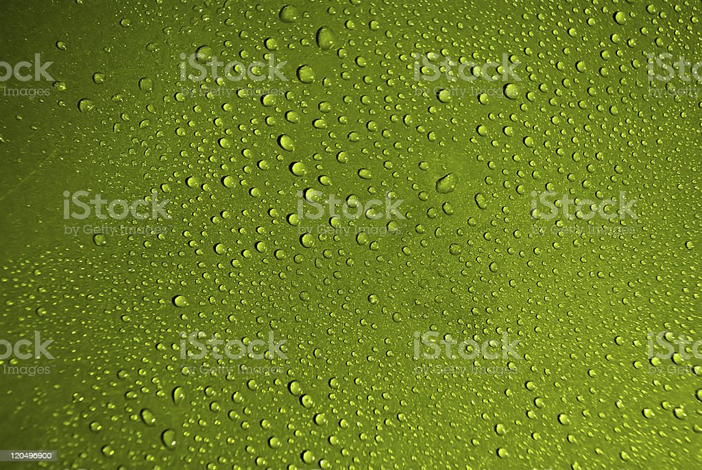 Crystal clear water drops over green background royalty-free stock photo