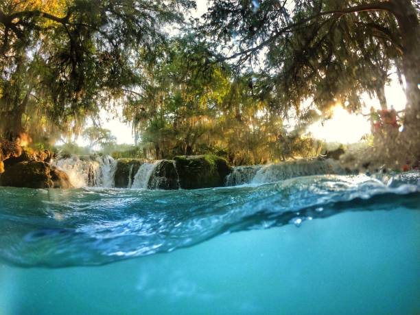Crystal clear water from the waterfalls in Huasteca Potosina Mexico. Semi-submerged photograph in the crystal clear waters of the river in Huasteca Potosina Mexico amid trees and rocks. san luis potosi stock pictures, royalty-free photos & images