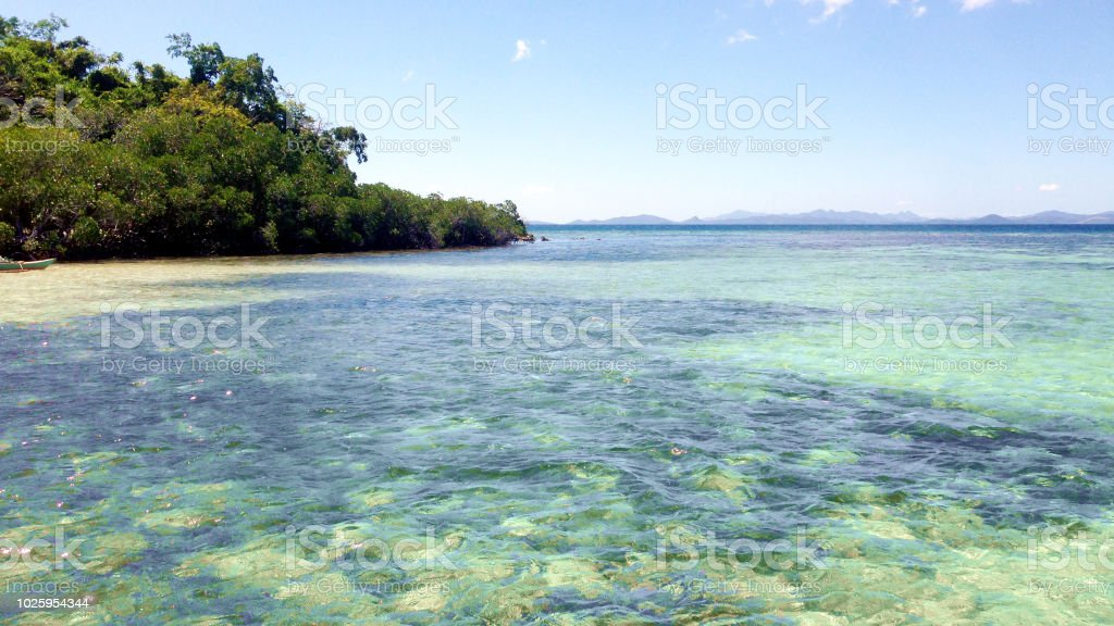 Crystal Clear Water On Coron Island Busuanga Island Palawan Philippines Stock Photo Download Image Now