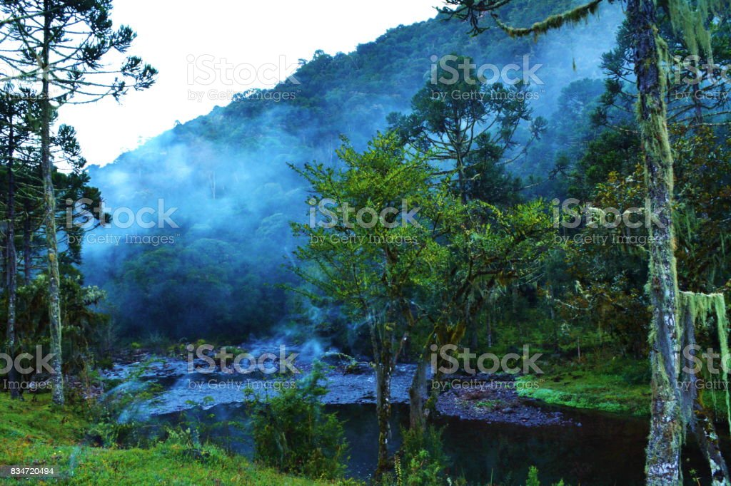 Crystal clear water river stock photo