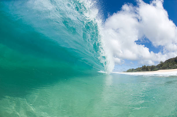 Crystal Clear Wave – Foto