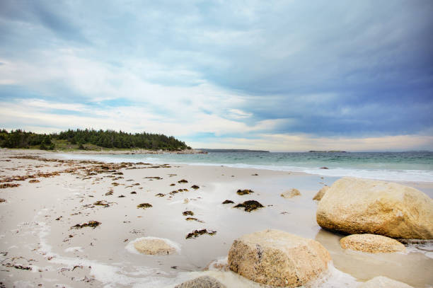 crystal crescent beach in nova scotia. - nova scotia halifax stock-fotos und bilder