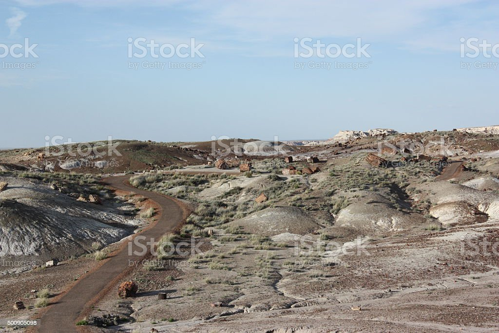 Crystal Forest Loop in Petrified Forest National Park, Arizona USA stock photo