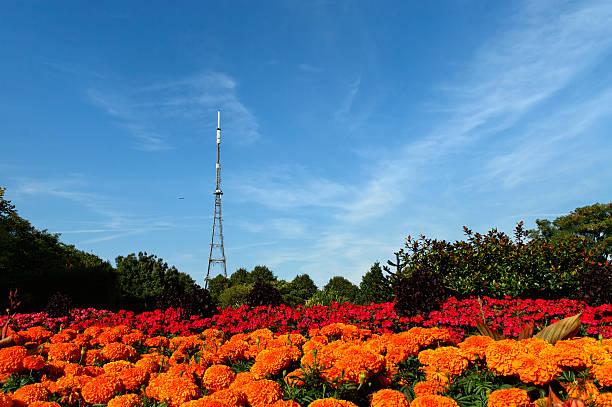 Crystal Palace Transmitting Station (Mast) stock photo