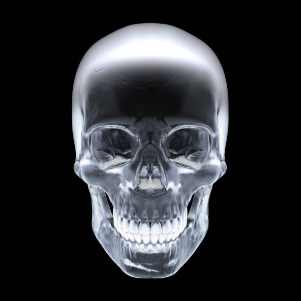 Crystal skull on dark background - Stock image stock photo