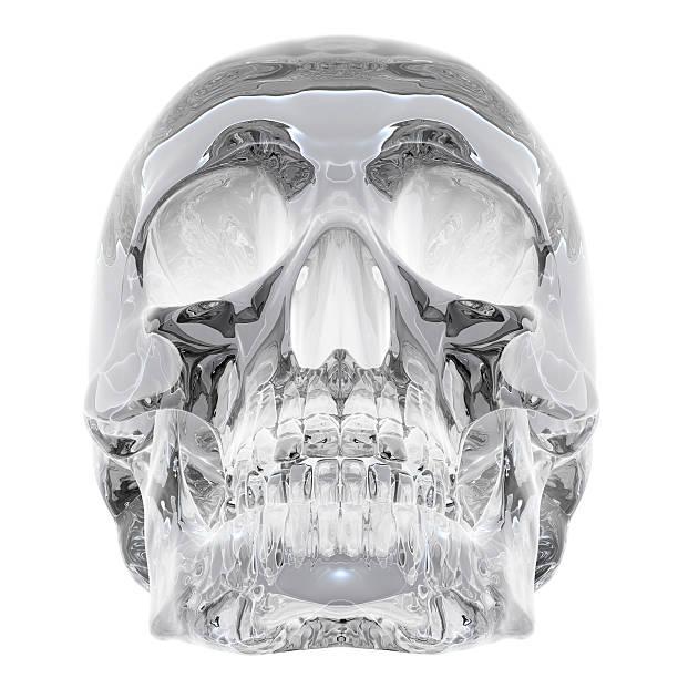 crystal skull stock photo