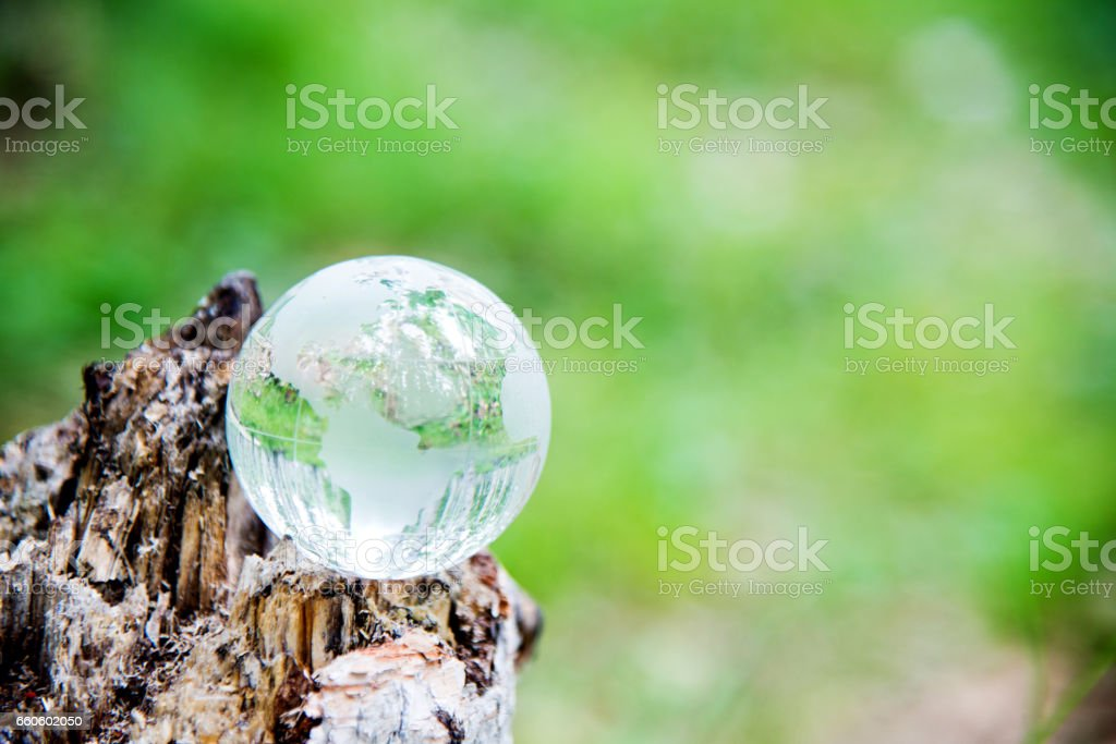 Crystal world globe on an old tree royalty-free stock photo